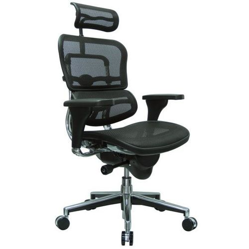Ergohuman V1 with Headrest Ergonomic Mesh Office Chair